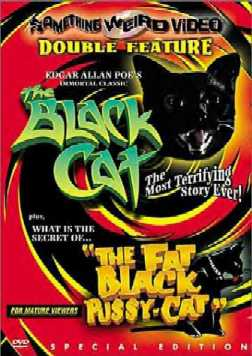 Black cat chubby columnist review